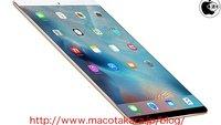 Apple soll März-Event für neue iPads und iPhones planen