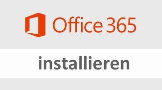 Office 365 installieren (Mac / PC) – so geht's