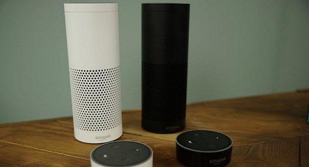 Amazon Echo Umfrage Bild