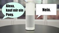 Alexa und Co.: Das werden Sprachassistenten am häufigsten gefragt
