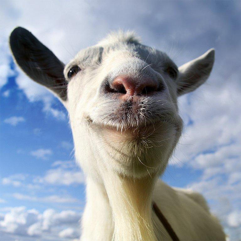 Goat - Simulator