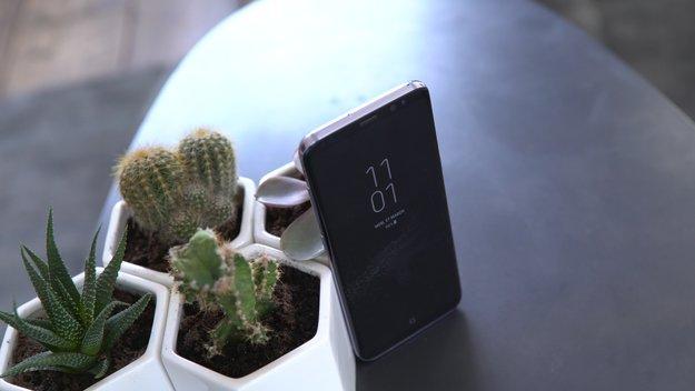 Display-Check: Samsung Galaxy S8 erhält neue Bestnote