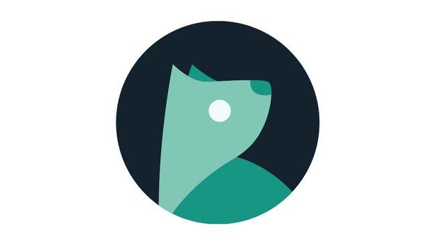 Evie Launcher: Minimalistische Homescreen-Alternative mit universeller Suche