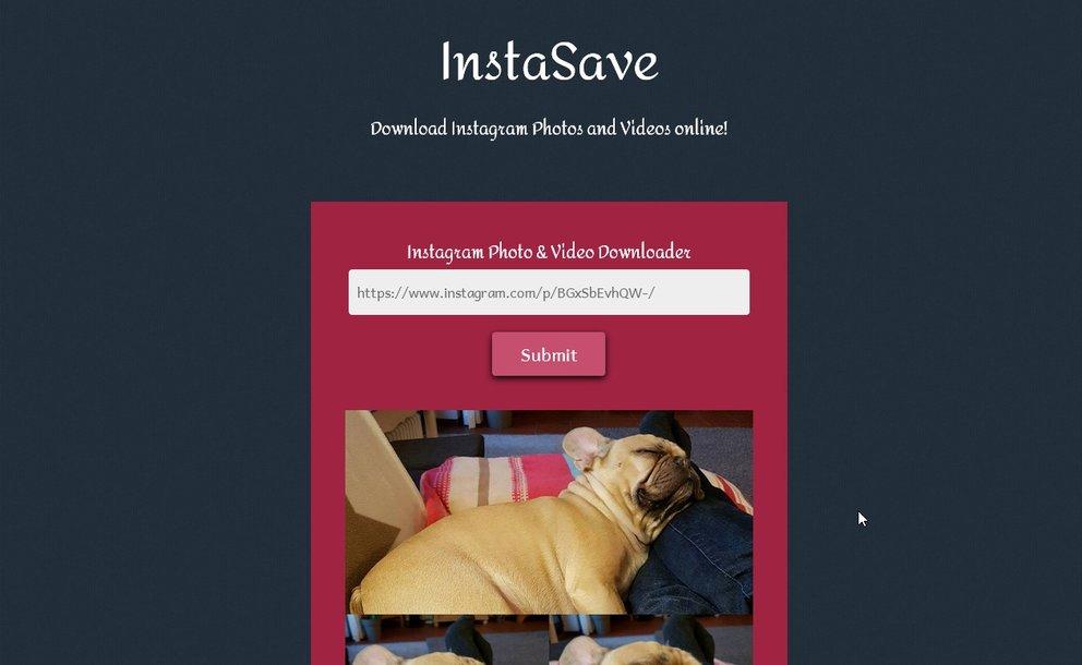 instagram-bilder-downloaden-pc