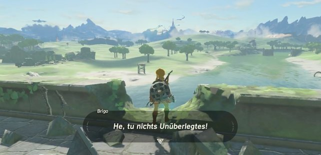 zelda-breath-of-the-wild-easter-egg-brigo