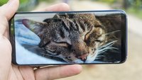 Anweisung an Entwickler: Google will neuen Standard für Smartphones durchsetzen