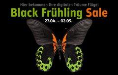 Black Frühling Sale bei Gravis: Bis zu 58 % Rabatt auf Apple, Libratone, Elgato Eve u.v.m.