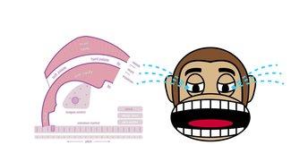 Dieser Online-Stimmgenerator macht Spaß und nervt deine Mitmenschen