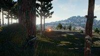 PlayerUnknown's Battlegrounds: Spawnpunkte für Waffen, Autos und mehr (mit Karte)