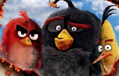 Die Vögel sind los: Angry...