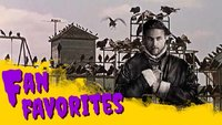 Film-Podcast: King Arthur, Horror-Vögel & der nahende Nervenzusammenbruch - Fan Favorites 6.6