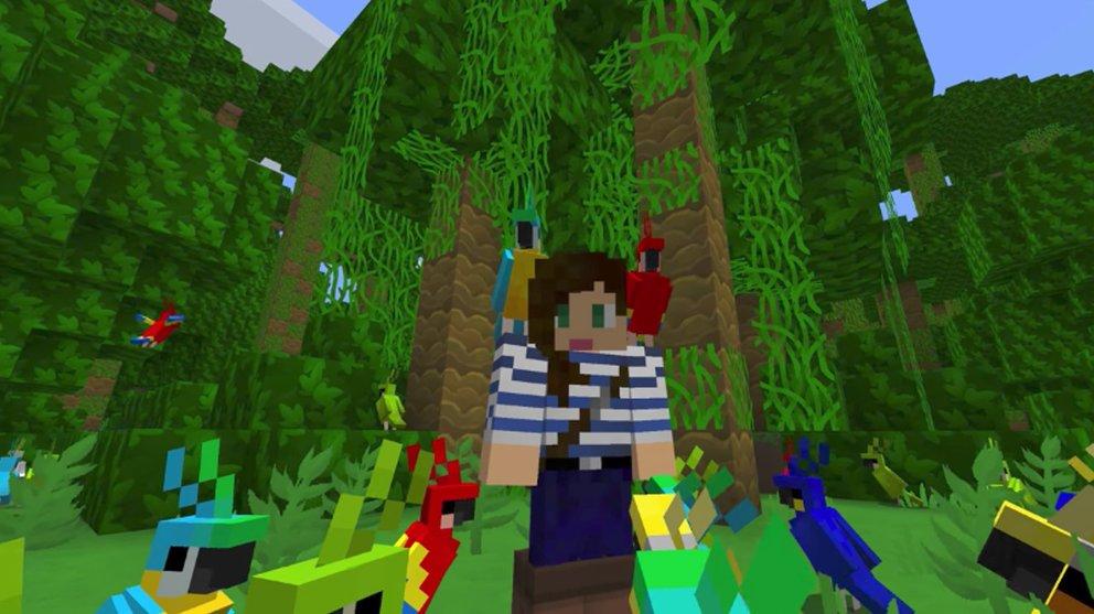 MinecraftPapageienHauptbild