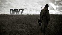 DayZ zeigt, wie der Hype um Battle Royale-Spiele sterben wird