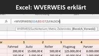 Excel: WVERWEIS am Beispiel-Video erklärt
