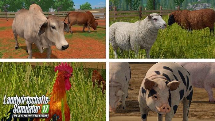 Regional typische Tiere erwarten euch auf der neuen Südamerika-Karte der Platinum Edition.