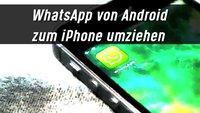 WhatsApp von Android auf iPhone umziehen