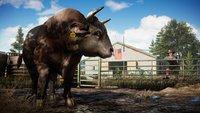 Far Cry 5: Auch Tiere haben Bedürfnisse
