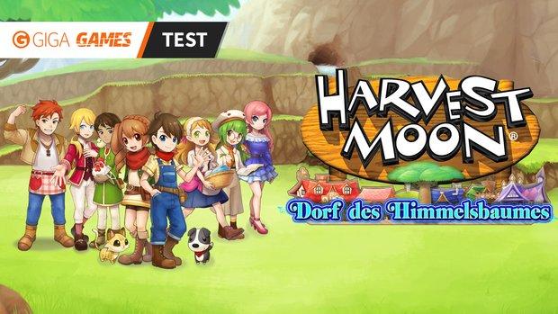 Harvest Moon – Dorf des Himmelsbaumes im Test: Ruhige Zeitreise in meine Kindheit