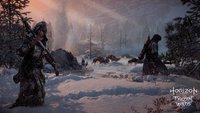 Horizon - Zero Dawn: Umfangreicher DLC in Aussicht