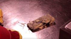 Samsung Galaxy S8 landet in der Fritteuse: Überlebt das Smartphone das heiße Öl?