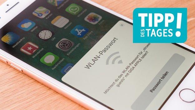 iPhone: WLAN-Passwort anzeigen und teilen, so gehts