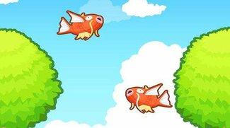 Pokémon - Karpador Jump!: Tipps für Karpador-Züchter