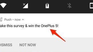 Hey, OnePlus: Eure Nutzer sind keine menschlichen Plakatwände!
