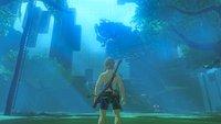 Zelda - Breath of the Wild: DLC-Prüfung in unter 50 Minuten beendet