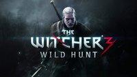 The Witcher 3: Alle 84 Endgegner so gut wie nackt besiegt