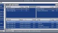 Winamp in Windows 10: Installieren & einrichten