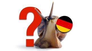 Top 10 der Länder mit dem schnellsten Internet: Wo steht Deutschland?
