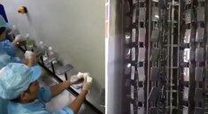 iPhone 8: Videos sollen Produktion zeigen