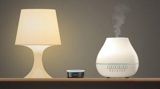 Duft aus dem High-Tech-Aroma-Diffuser: Ein wohlriechender Trend strömt auf uns zu