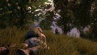 PlayerUnknown's Battlegrounds: Twitch-Chat spielt gemeinsam eine Figur