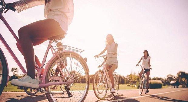 Flixbus Fahrrad Artikelbild