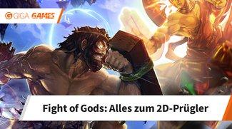 Fight of Gods: Dieses Spiel ist in Malaysia verboten