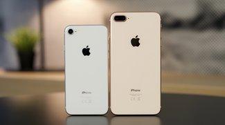 iPhone gefunden? Diese Rechte hast du als Finder