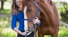 Top 4 Reiter-Apps: Praktisch für Pferdefreunde