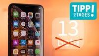 Apples Beta-Programm für iOS 13 & macOS beenden, so gehts