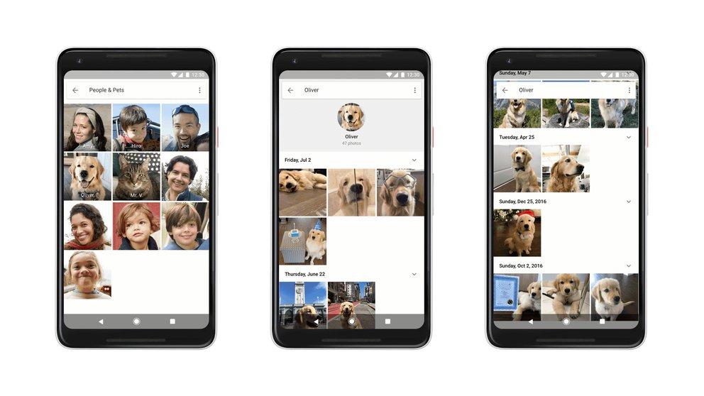 Google Fotos: Geniale Funktion findet deine behaarten Freunde