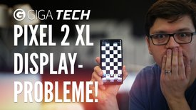 Die 3 Display-Probleme des Pixel 2 XL