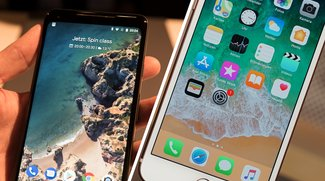 Google Pixel 2 XL vs. iPhone 8 Plus: Innovation gegen Langeweile