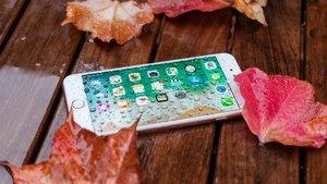 """iPhone macht """"Freischwimmer"""" und rettet Leben"""