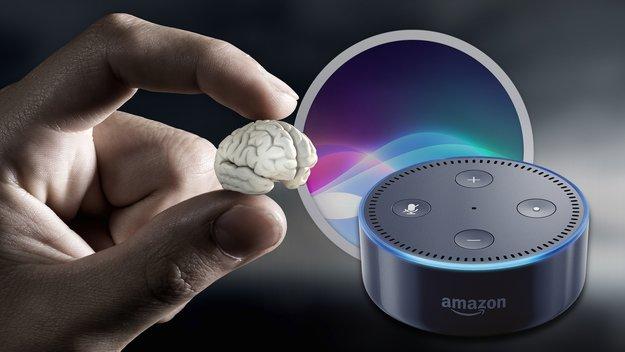 Siri, Alexa und Konsorten: Darum ist die künstliche Intelligenz für mich zu blöde