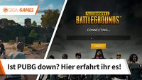 PlayerUnknown's Battlegrounds: Server down? Alle Störungen und Probleme