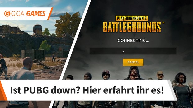PlayerUnknown's Battlegrounds: Server down? Alle Störungen und Probleme