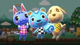 Animal Crossing - Pocket Camp: Der wohl schlimmste Pizza-Lieferdienst aller Zeiten