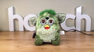 Furlexa: Bastler baut Alexa in Furby ein