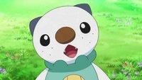 """Pokémon: Zeichner gibt zu, dass er Pokémon bewusst """"uncool"""" macht"""