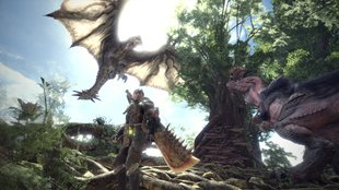 Monster Hunter World: So lang ist die Story